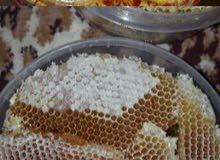 للبيع نحل بلدي وعسل طبيعي%