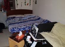 سرير للايجار في إنترناشيونال سيتي