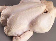 مطلوب عامل بسلخانة دجاج