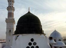 إمام وخطيب جزائري؛ يبحث عن مسجد أو جامع بمسقط