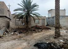 قطعة ارض للبيع في قرية البو عليان قرب مرقد السيد ابن الكاظم