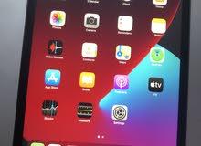 iPad Mini 5th Gen Wifi + Cellular 256GB