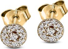 Tanache Grace earrings in 1.002 gold weight with 20 pcs. diamonds in 0.08 carat