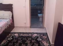 شقة مفروش ميامى خالد بن الوليد يوم شهر سنه