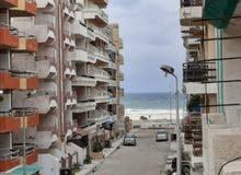 شقة بعد 12 عمارة من البحر في شاطئ النخيل الإسكندرية اكسترا لوكس