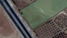 لقطة - ارض على الطريق الرئيسي بلعما الزرقاء رحاب اربد المفرق عين و المعمرية تصلح مزرعة او تجاري