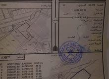 أرض سكنيه فيها طوي مطلوب 35 صافي  في دبيشي