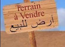 أرض للبيع في الدفنيه طريق النعجة مساحه 1800م علي القطوان