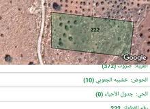 ارض للبيع في منطقة الزرقاء صروت بيرين قريبة  شفابدران