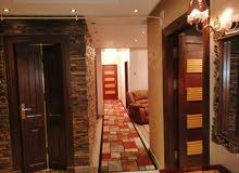 شقة265م هاي كلاس مفروشة فندقيه برج جديد اول سكن عباس العقاد مدينة نصر