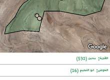 11كيشان مشرك في الكرك والقصر والمزار الجنوبي