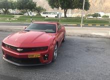 Camaro (Oman Agency) (Khaliji)