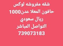 شقه ايجار غير مفروشه لوكس المعلا حافون 739073183