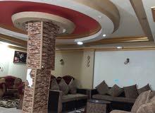 شقة بقلب مدينة ابوحماد