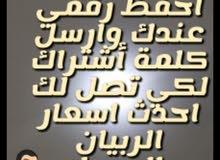 ربيان طازج من بحر الشرقيه