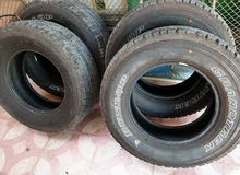 Dunlop 2020 tyres tires (brand new)