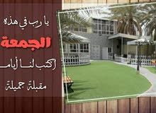 استراحة الضيافة لقضاء أجمل الأوقات في فنجاء ولاية بدبد