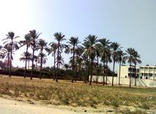 منزل عظم 120م على ارض 300م في دير البلح.
