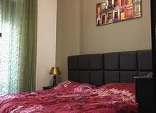 شقة مفروشة غرفتين نوم للايجار الشهري بجانب كوزمو