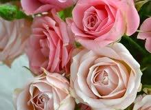 باقات الزهور هدايا