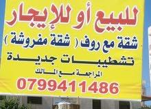 شقه + روف (شقه صغيره) فرش كامل  للبيع او للايجار في شفا بدران قرب الكليه البحريه