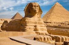 خدمات تاشيرة مصر استيكر