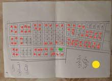 مخطط البساتين قبل الحظيره الجمركيه مساحة القطع 500 متر