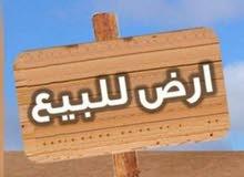 أرض للبيع في شفا بدران مرج الفرس