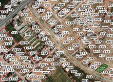 الضليل، قطعتي أرض سكنيه مساحه 1428 والأخرى 1287 للبيع بسعر مغري
