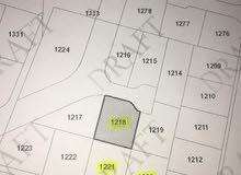 قطع اراضي للبيع في اليادوده منطقة اشكو الكرمل  بمساحات من 500م -550م