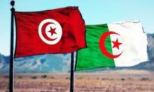 تونسية باحثة عن عمل