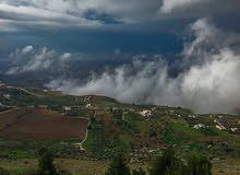 14 دنم للبيع في السلط البطين اطلالة ع الغرب و جبال فلسطين