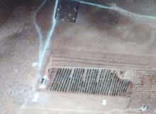 ارض 4 دونم في مادبا مليح