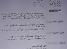 محاسبه مصريه تبحث عن عمل
