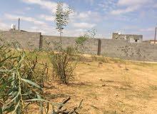 قطعة ارض للبيع مساحتها 500متر تقريباً تقع في وادي الربيع الشرقي  النشيع تاجورا