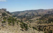 ارض في الاردن عمان الغربيه بسعر مغري حي الكرسي مساحه 1137م