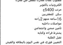 مطلوب عمال مخازن فى اكتوبر براتب 5400 جنيه