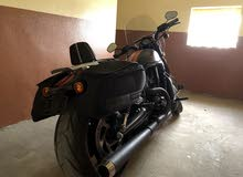 An Awesome 2015 GCC Harley Davidson Night Rod Special VRSCDX 3,400 KM Only!!!