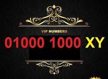 01000.1000.vip