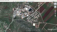 الارض على بعد 50 متر من سور الجامعة العربية الامريكية  البيع  مباشر من الوكيل