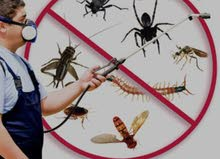 Best for Pest