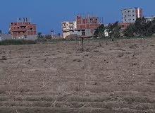 قطع أراضى مميزة بجوار سكن مصر كاملة المرافق فى دمياط الجديدة
