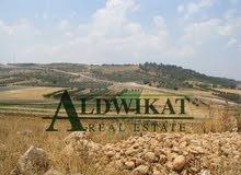 ارض بسعر مميز جدا للبيع في منطقة ابو نصير حوض  ام رجم المساحه 10606م