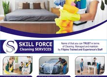 Hourly, daily and weekly  cleaning Services