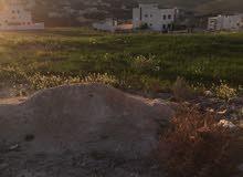قطعة ارض للبيع في شفا بدران حوض مرج الاجرب