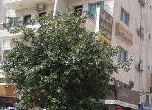 عماره في مدينه العقبه الموقع فوق مستشفى هيا