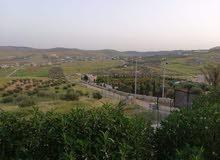 مزرعة للبيع ( بالأردن ) قرب عمان