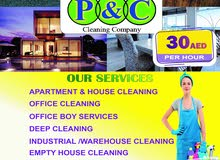 PCB CLEANING SERVICES