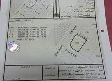 ارض سكنية لبيع في ولاية ضنك حي مدنية جديدة