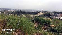 للبيع في السلط 8 دنم في المغاريب على رائس قمه مطله على جبال فلسطين